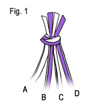 cobrastitch-fig1.jpg